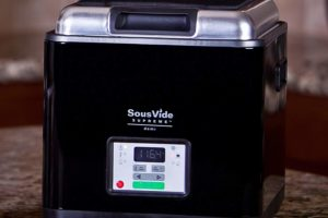 Best Sous Vide Machines for All Budgets